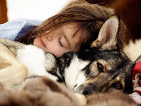 cachorro para criança