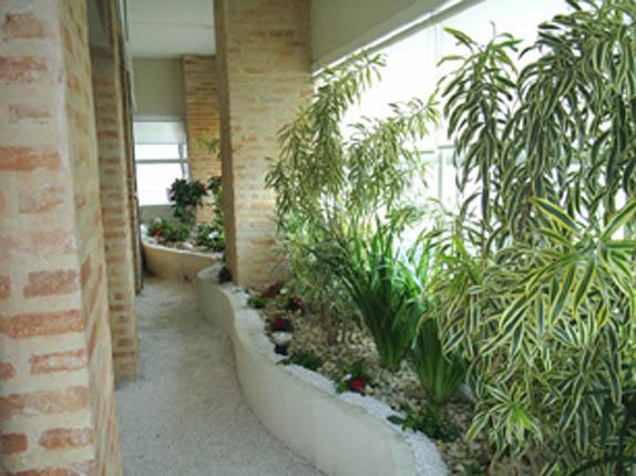 """flores jardim sombra:Comentário no texto """"Planta para Interiores"""""""